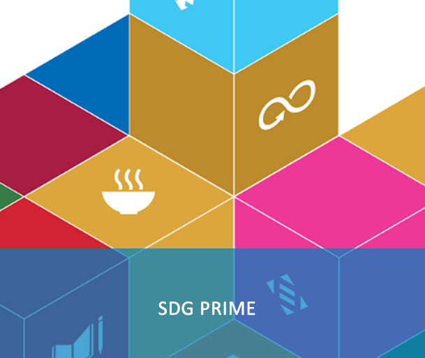 SDG Primer: This e-course aims to establish a common base of understanding and approach for the UN system in supporting the 2030 Agenda. It is primarily meant to inform, in broad terms, the programmes and actions of all UN entities, including their engagement with government and civil society partners.